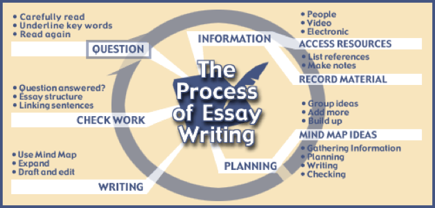 The Writing Process essays